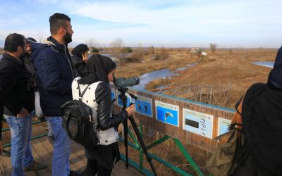 SEI to Cooperate in Experiential Environmental Education in Selkeh