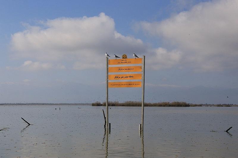 Signboard in Sorkhankol