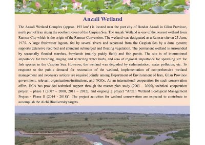 Anzali_Wetland_Newsletter6_ページ_03_resized