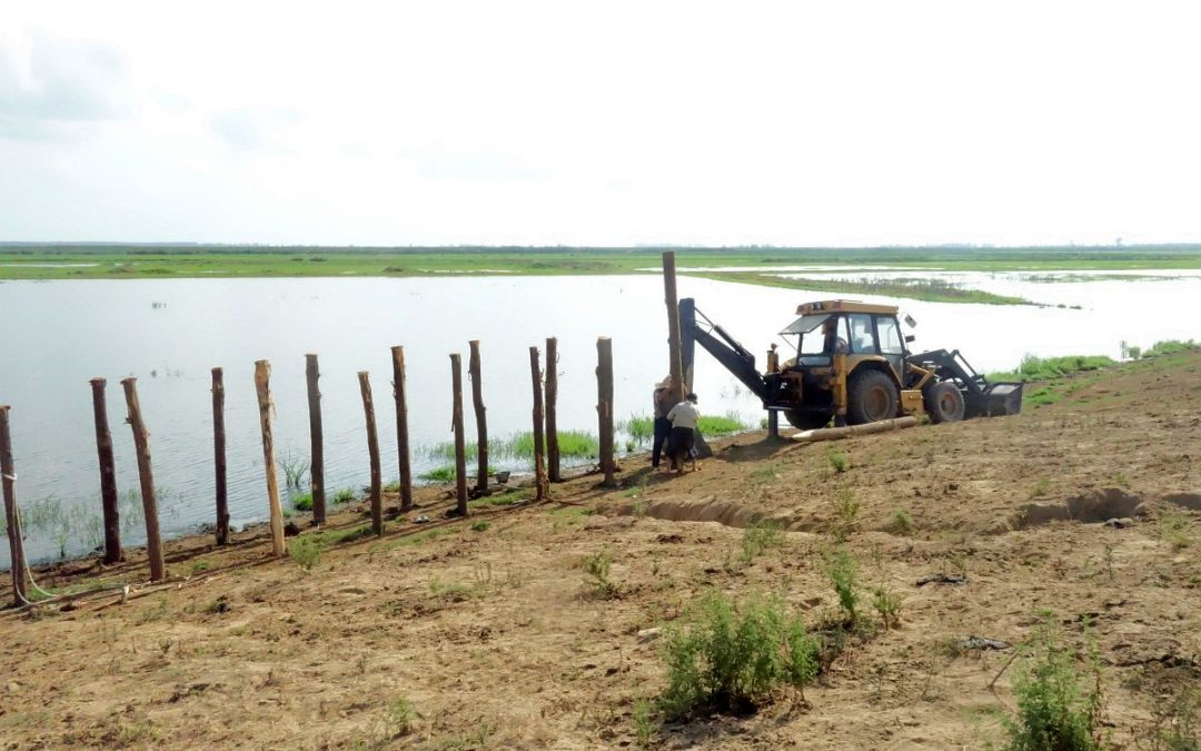 Biotope Construction Starts in Selkeh