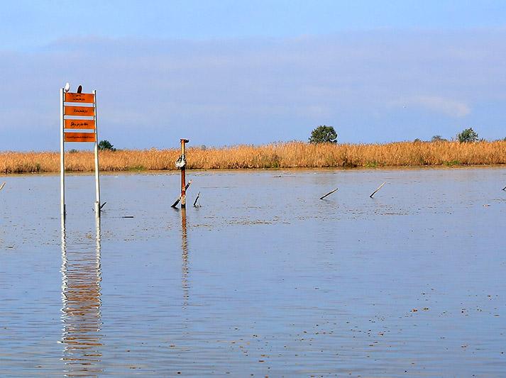 نصب تابلوهای مرز مناطق حفاظت شده تالاب انزلی