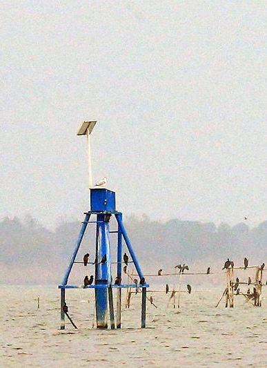 Installation of Water Level Gauge Stations anzali wetland