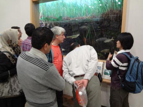 Partnership between Anzali Wetland and Kushiro Wetland
